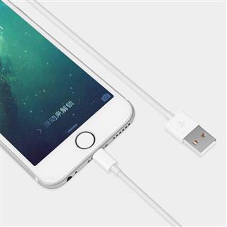 苹果数据线 1米Xs Max/XR/X/8Plus